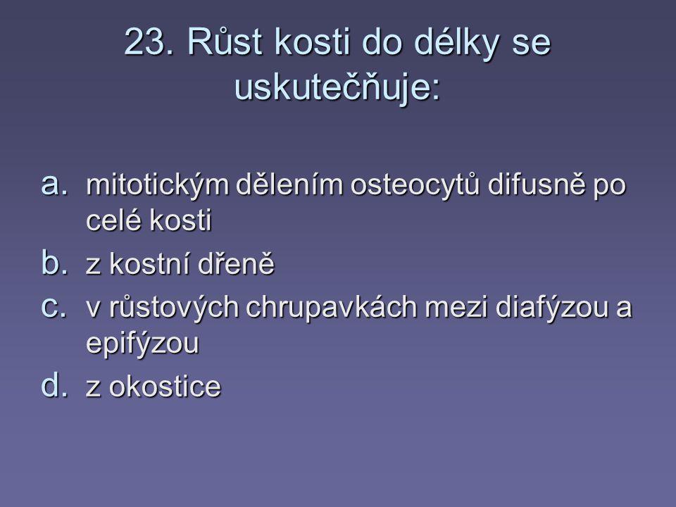 22. Scapula je: a) lopatka a) lopatka b) klíční kost c) kost týlní c) kost týlní