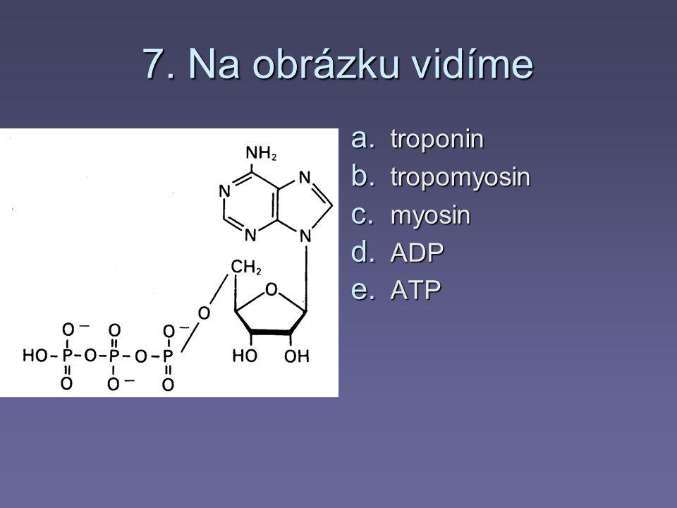 6. Pro svalový stah jsou důležité zejména a. ionty hořčíku b. ionty sodíku c. ionty chlóru d. ionty vápníku e. ionty draslíku