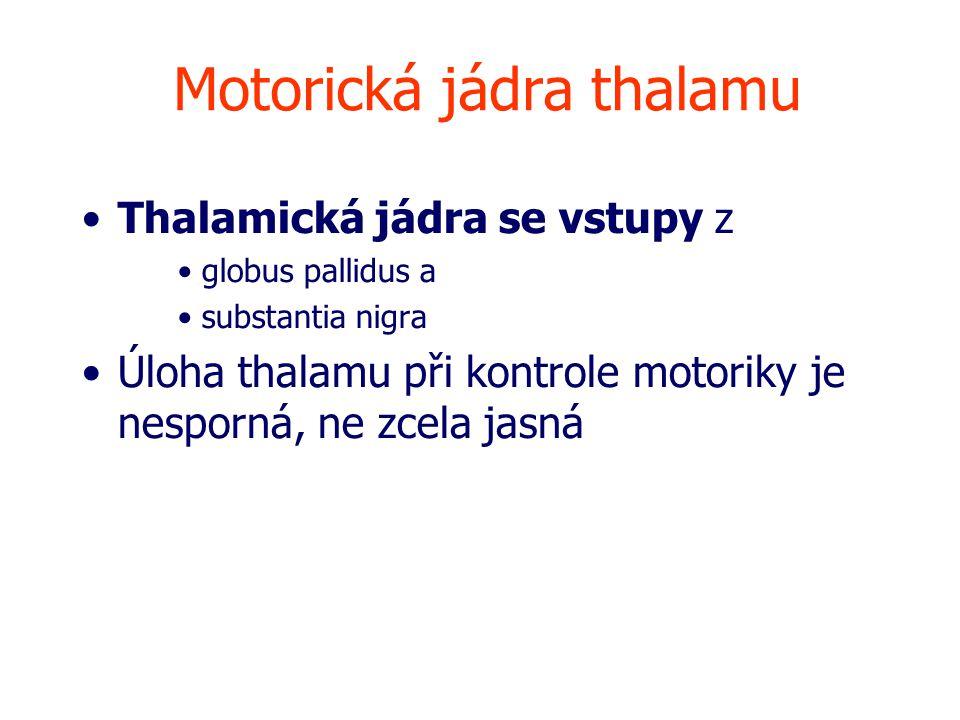 Motorická jádra thalamu Thalamická jádra se vstupy z globus pallidus a substantia nigra Úloha thalamu při kontrole motoriky je nesporná, ne zcela jasná