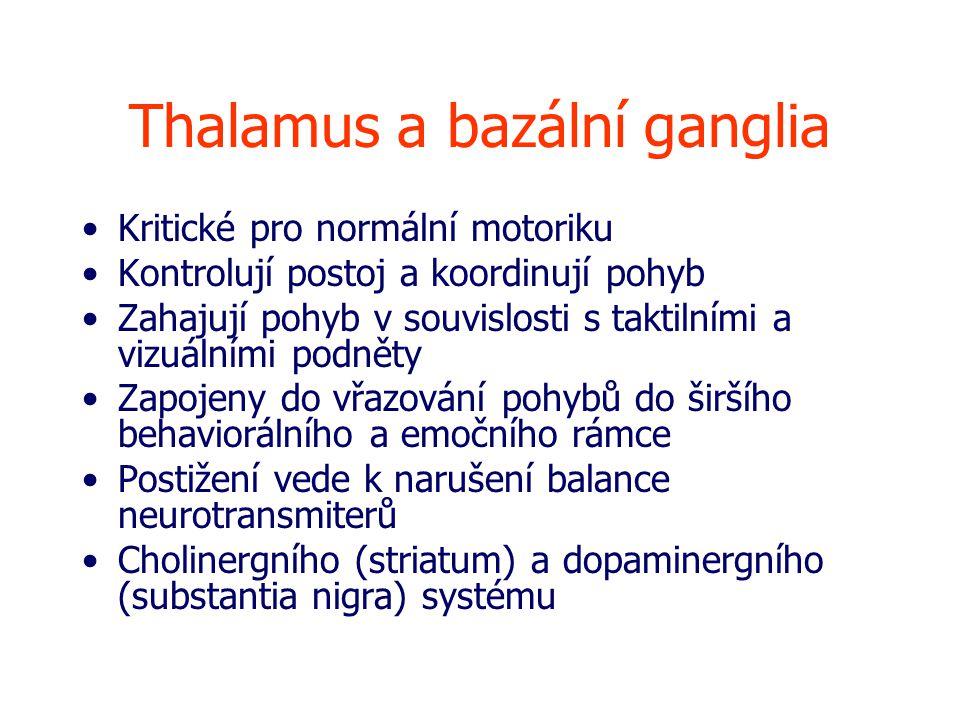 Thalamus a bazální ganglia Kritické pro normální motoriku Kontrolují postoj a koordinují pohyb Zahajují pohyb v souvislosti s taktilními a vizuálními podněty Zapojeny do vřazování pohybů do širšího behaviorálního a emočního rámce Postižení vede k narušení balance neurotransmiterů Cholinergního (striatum) a dopaminergního (substantia nigra) systému
