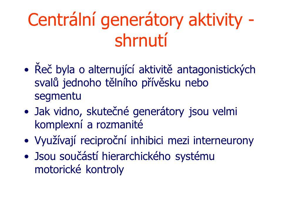 Centrální generátory aktivity - shrnutí Řeč byla o alternující aktivitě antagonistických svalů jednoho tělního přívěsku nebo segmentu Jak vidno, skutečné generátory jsou velmi komplexní a rozmanité Využívají reciproční inhibici mezi interneurony Jsou součástí hierarchického systému motorické kontroly