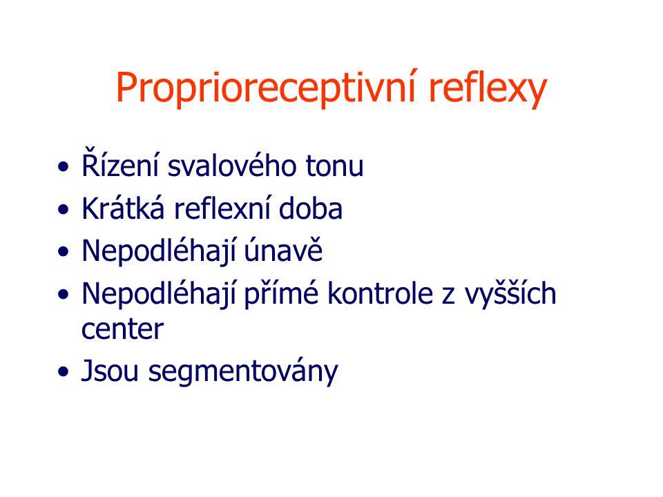 Proprioreceptivní reflexy Řízení svalového tonu Krátká reflexní doba Nepodléhají únavě Nepodléhají přímé kontrole z vyšších center Jsou segmentovány