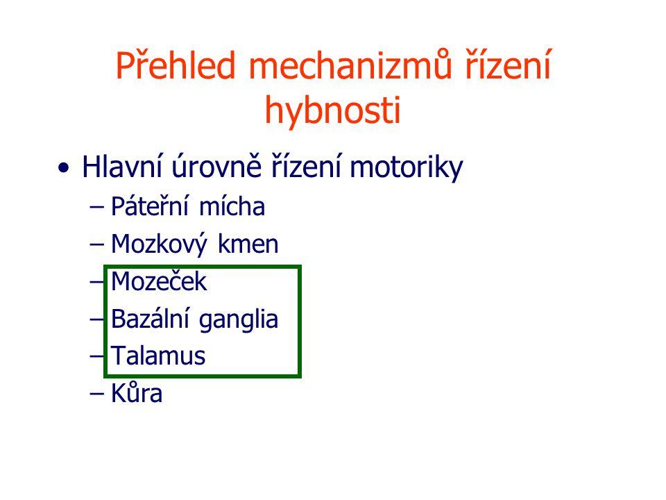Přehled mechanizmů řízení hybnosti Hlavní úrovně řízení motoriky –Páteřní mícha –Mozkový kmen –Mozeček –Bazální ganglia –Talamus –Kůra