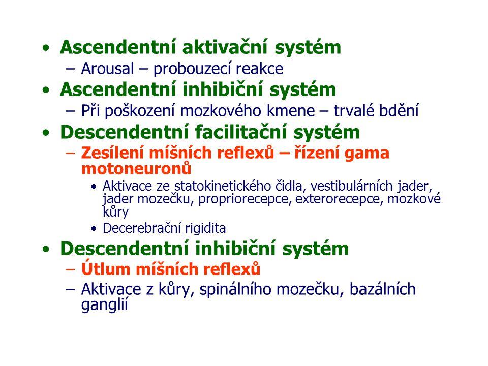 Ascendentní aktivační systém –Arousal – probouzecí reakce Ascendentní inhibiční systém –Při poškození mozkového kmene – trvalé bdění Descendentní facilitační systém –Zesílení míšních reflexů – řízení gama motoneuronů Aktivace ze statokinetického čidla, vestibulárních jader, jader mozečku, propriorecepce, exterorecepce, mozkové kůry Decerebrační rigidita Descendentní inhibiční systém –Útlum míšních reflexů –Aktivace z kůry, spinálního mozečku, bazálních ganglií