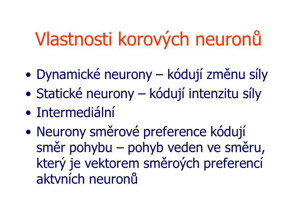 Vlastnosti korových neuronů Dynamické neurony – kódují změnu síly Statické neurony – kódují intenzitu síly Intermediální Neurony směrové preference kódují směr pohybu – pohyb veden ve směru, který je vektorem směroých preferencí aktvních neuronů
