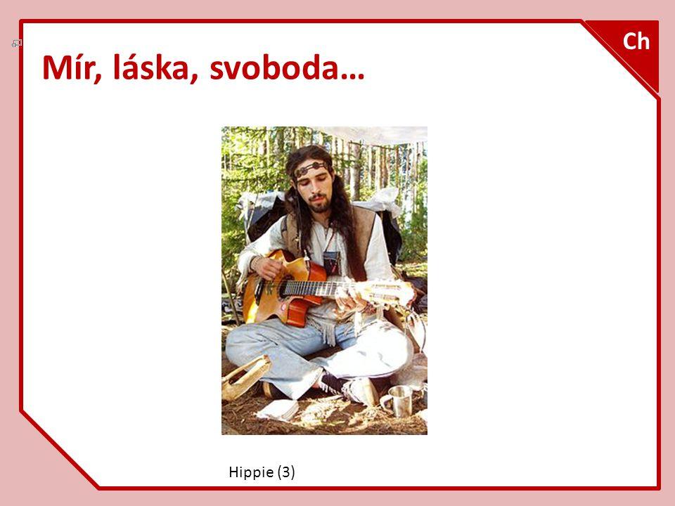 Mír, láska, svoboda… Ch Hippie (3)