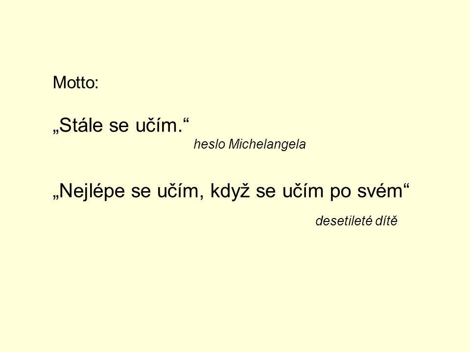 """Motto: """"Stále se učím."""" heslo Michelangela """"Nejlépe se učím, když se učím po svém"""" desetileté dítě"""