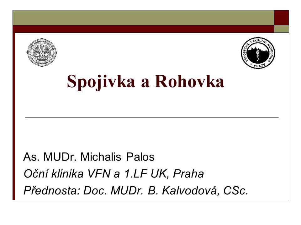 Spojivka a Rohovka As. MUDr. Michalis Palos Oční klinika VFN a 1.LF UK, Praha Přednosta: Doc. MUDr. B. Kalvodová, CSc.