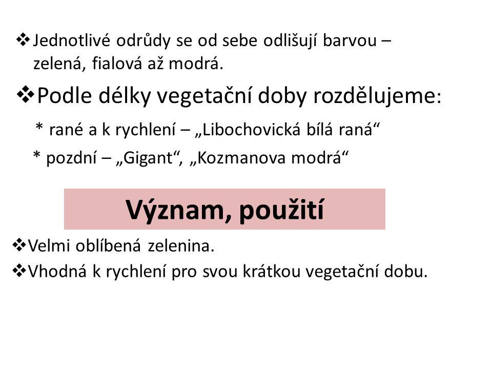 Nároky na prostředí  Zelenina I.