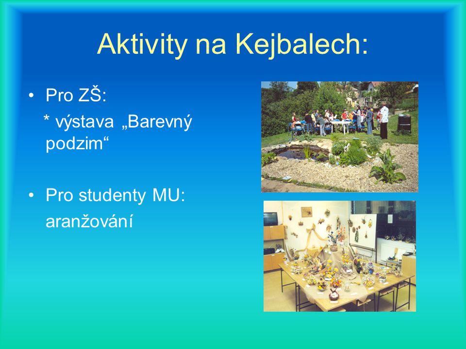 """Aktivity na Kejbalech: Pro ZŠ: * výstava """"Barevný podzim Pro studenty MU: aranžování"""