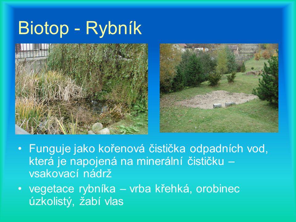 Biotop - Rybník Funguje jako kořenová čistička odpadních vod, která je napojená na minerální čističku – vsakovací nádrž vegetace rybníka – vrba křehká, orobinec úzkolistý, žabí vlas