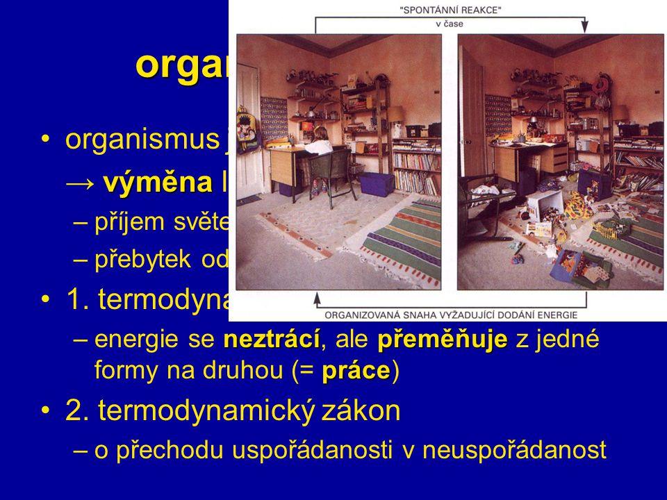 organismy a energie otevřenýorganismus je otevřený systém výměna → výměna látek a energie s okolím –příjem světelné E, nebo E chemických vazeb –přebyt