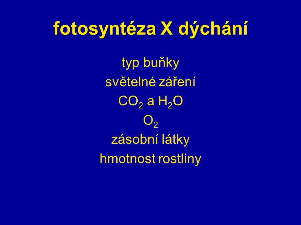 fotosyntéza X dýchání typ buňky světelné záření CO 2 a H 2 O O2O2 zásobní látky hmotnost rostliny