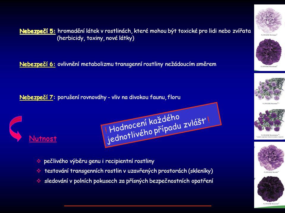 Nebezpečí 7 Nebezpečí 7: porušení rovnováhy - vliv na divokou faunu, floru Nutnost  pečlivého výběru genu i recipientní rostliny  testování transgen