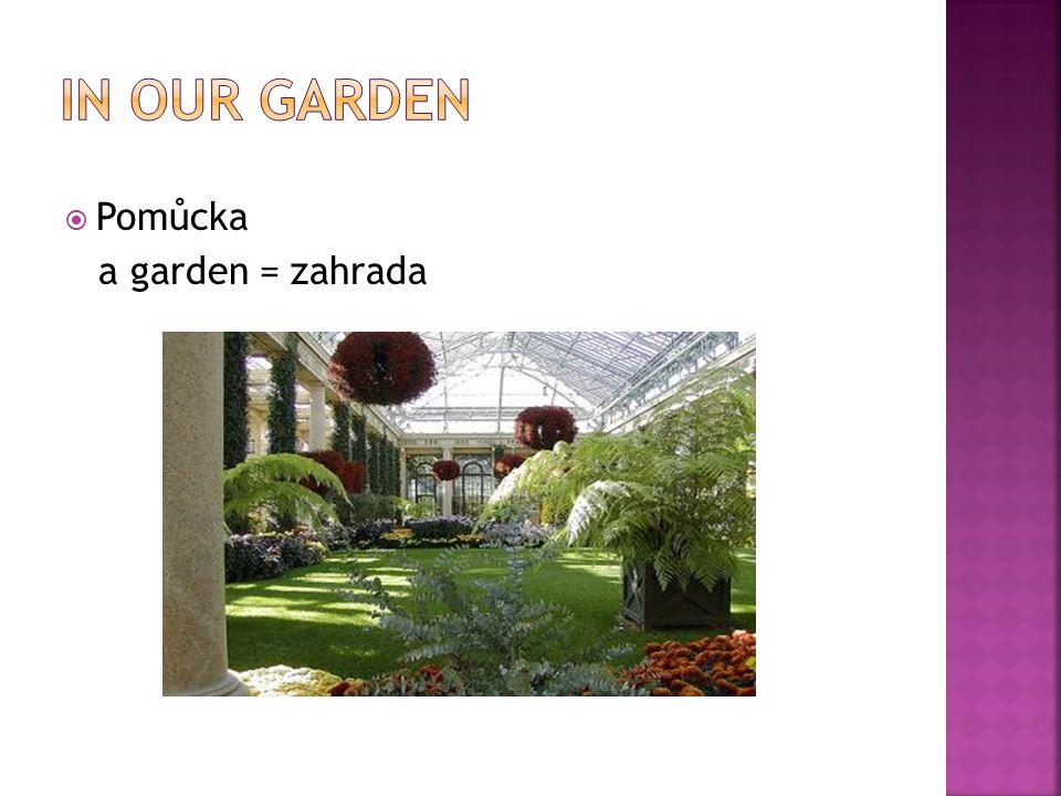  Pomůcka a garden = zahrada