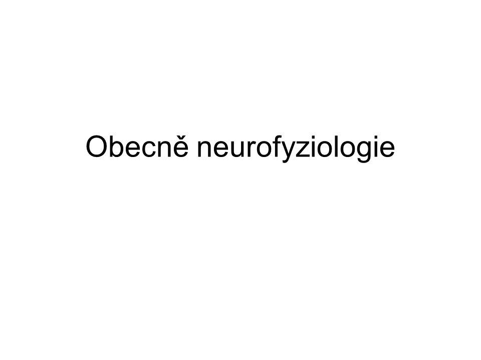 Obecně neurofyziologie