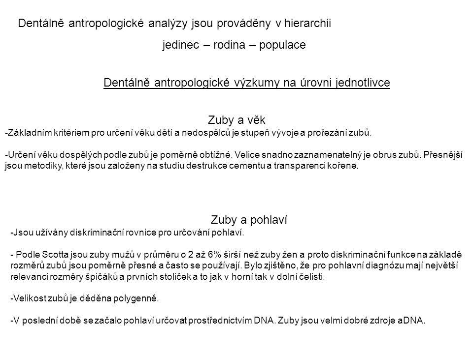 Dentálně antropologické analýzy jsou prováděny v hierarchii jedinec – rodina – populace Dentálně antropologické výzkumy na úrovni jednotlivce Zuby a v
