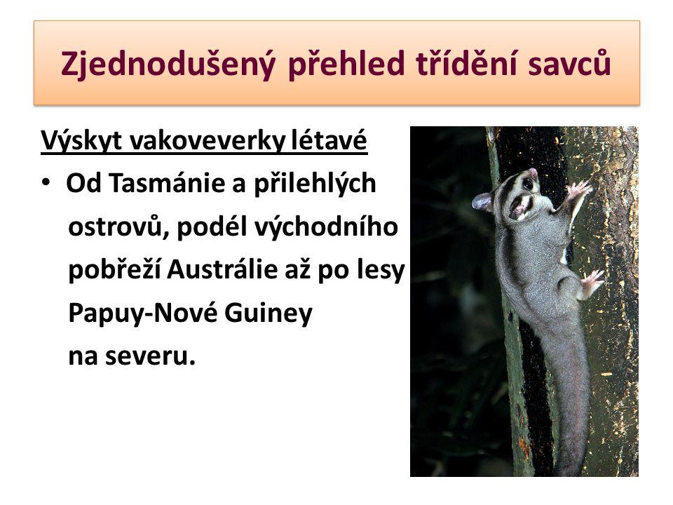 Zjednodušený přehled třídění savců Výskyt vakoveverky létavé Od Tasmánie a přilehlých ostrovů, podél východního pobřeží Austrálie až po lesy Papuy-Nov
