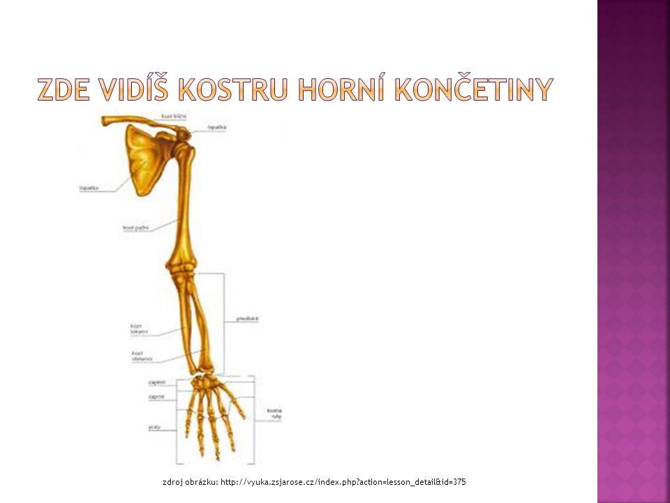 zdroj obrázku: http://vyuka.zsjarose.cz/index.php?action=lesson_detail&id=375