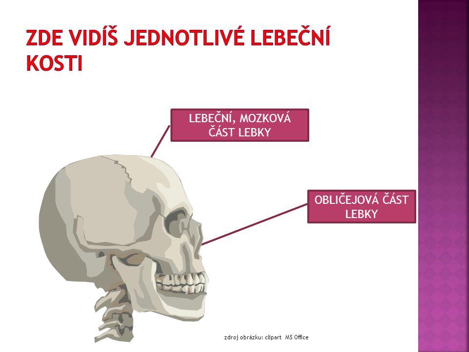 pohyb celého  Dolní končetiny nesou celé tělo a umožňují pohyb celého pánevní kostí  Dolní končetina je k trupu připevněna pánevní kostí stehenní kostí  Volná část je tvořena stehenní kostí, je to největší a nejmohutnější kost v lidském těle lýtková a holenní  Následují kosti lýtková a holenní zánártní, záprstní a články prstů  Kostru nohy tvoří kůstky zánártní, záprstní a články prstů  mezi jednotlivými kostmi jsou klouby: kolenní, hlezenní a drobné klouby mezi kostmi nártními,  mezi jednotlivými kostmi jsou klouby: kolenní, hlezenní a drobné klouby mezi kostmi nártními, záprstními a ve článcích prstů