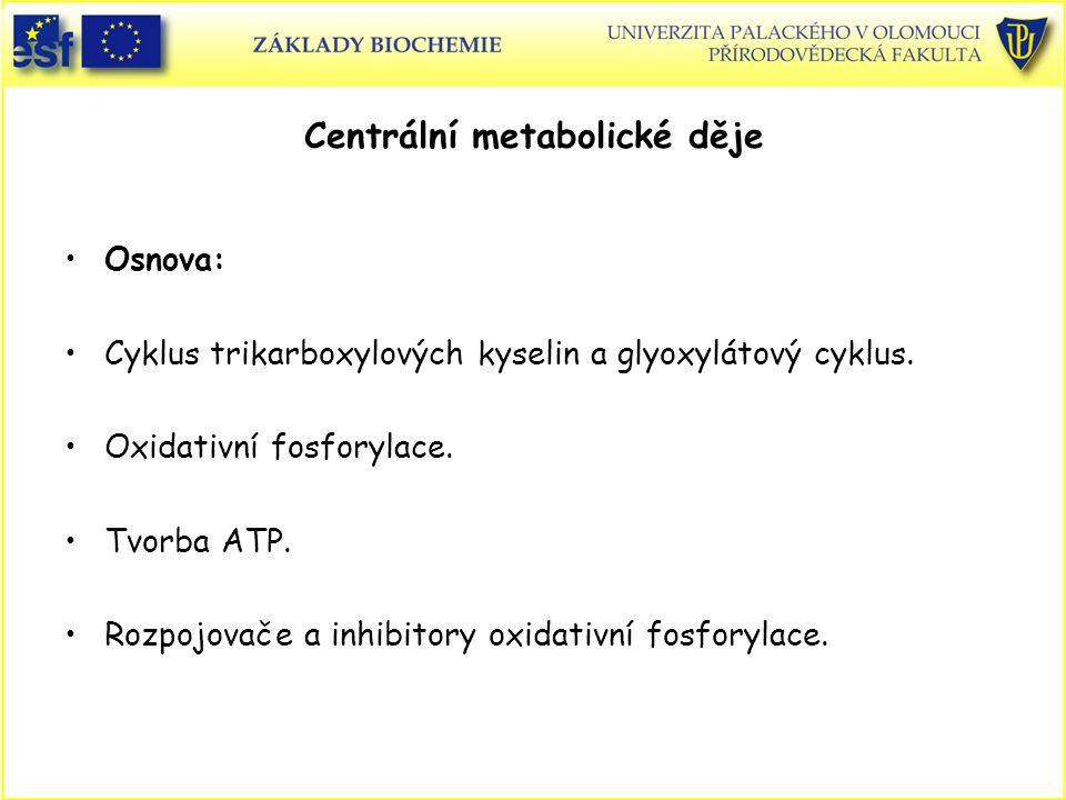 Osnova: Cyklus trikarboxylových kyselin a glyoxylátový cyklus. Oxidativní fosforylace. Tvorba ATP. Rozpojovače a inhibitory oxidativní fosforylace.
