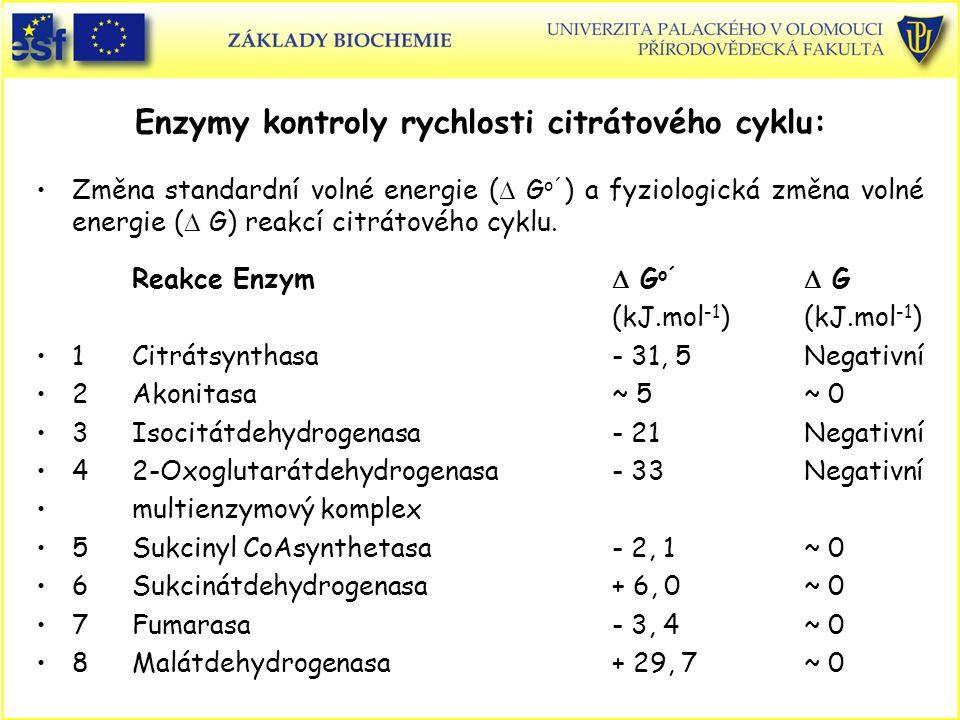 Enzymy kontroly rychlosti citrátového cyklu: Změna standardní volné energie (  G o´ ) a fyziologická změna volné energie (  G) reakcí citrátového cy