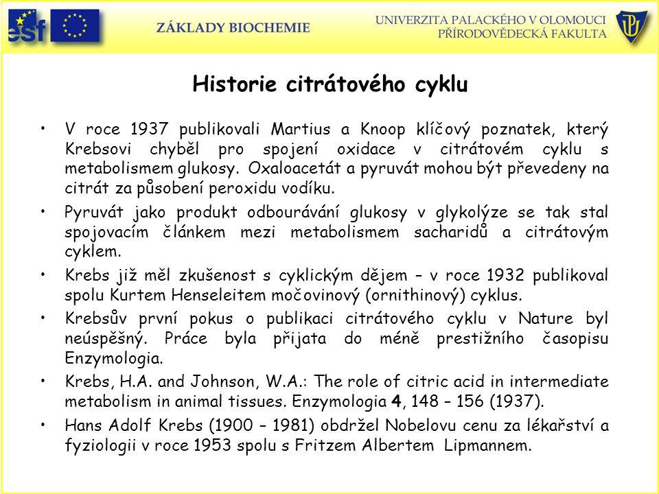 Historie citrátového cyklu V roce 1937 publikovali Martius a Knoop klíčový poznatek, který Krebsovi chyběl pro spojení oxidace v citrátovém cyklu s me