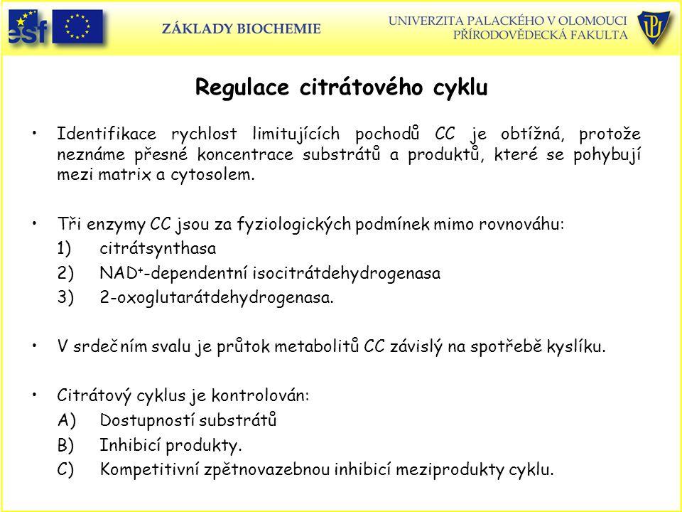 Regulace citrátového cyklu Identifikace rychlost limitujících pochodů CC je obtížná, protože neznáme přesné koncentrace substrátů a produktů, které se