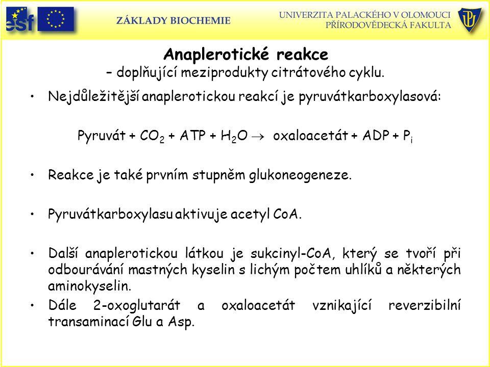 Anaplerotické reakce – doplňující meziprodukty citrátového cyklu. Nejdůležitější anaplerotickou reakcí je pyruvátkarboxylasová: Pyruvát + CO 2 + ATP +