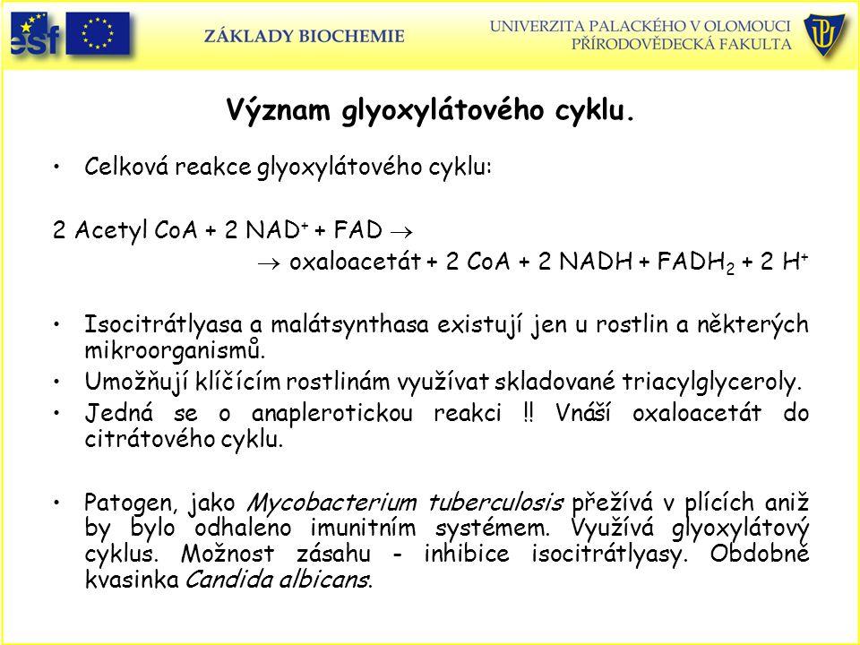 Význam glyoxylátového cyklu. Celková reakce glyoxylátového cyklu: 2 Acetyl CoA + 2 NAD + + FAD   oxaloacetát + 2 CoA + 2 NADH + FADH 2 + 2 H + Isoci