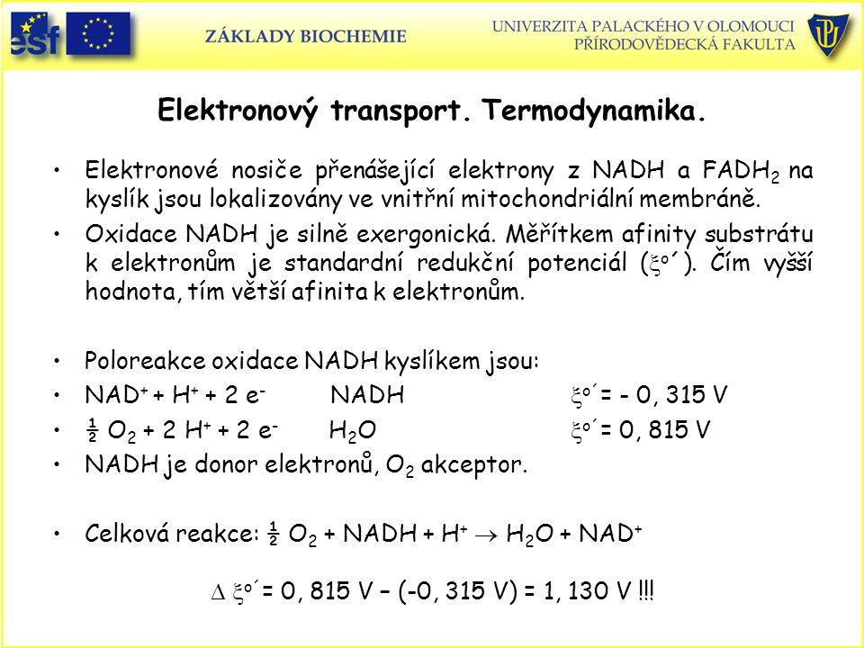 Elektronový transport. Termodynamika. Elektronové nosiče přenášející elektrony z NADH a FADH 2 na kyslík jsou lokalizovány ve vnitřní mitochondriální