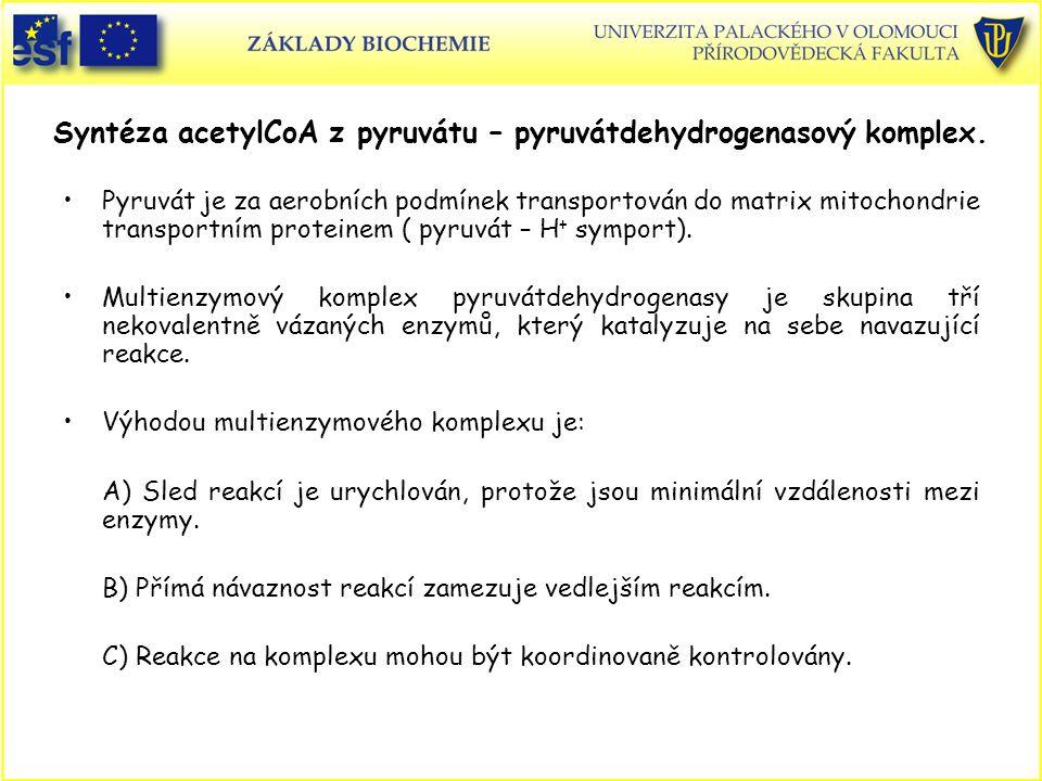 Syntéza acetylCoA z pyruvátu – pyruvátdehydrogenasový komplex. Pyruvát je za aerobních podmínek transportován do matrix mitochondrie transportním prot