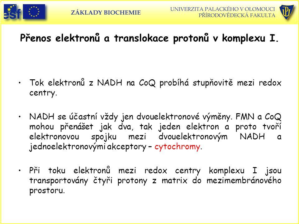 Přenos elektronů a translokace protonů v komplexu I. Tok elektronů z NADH na CoQ probíhá stupňovitě mezi redox centry. NADH se účastní vždy jen dvouel
