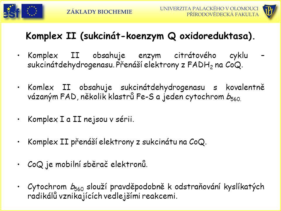 Komplex II (sukcinát-koenzym Q oxidoreduktasa). Komplex II obsahuje enzym citrátového cyklu – sukcinátdehydrogenasu. Přenáší elektrony z FADH 2 na CoQ