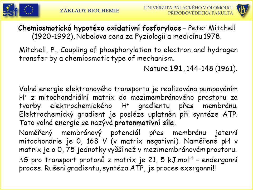 Chemiosmotická hypotéza oxidativní fosforylace – Peter Mitchell (1920-1992), Nobelova cena za Fyziologii a medicínu 1978. Mitchell, P., Coupling of ph