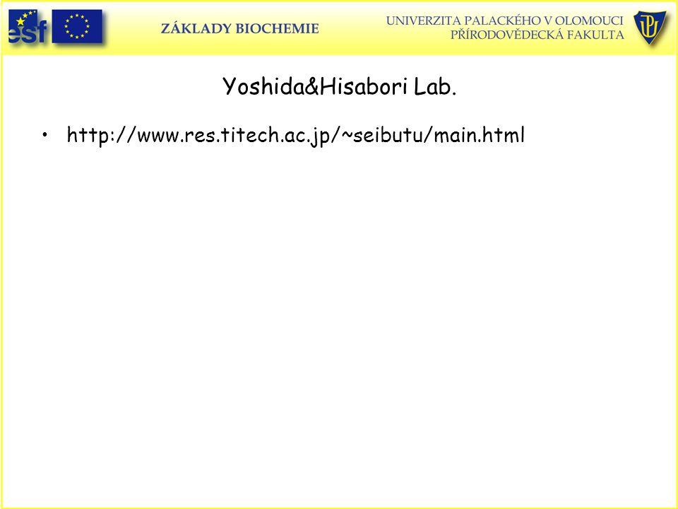 Yoshida&Hisabori Lab. http://www.res.titech.ac.jp/~seibutu/main.html