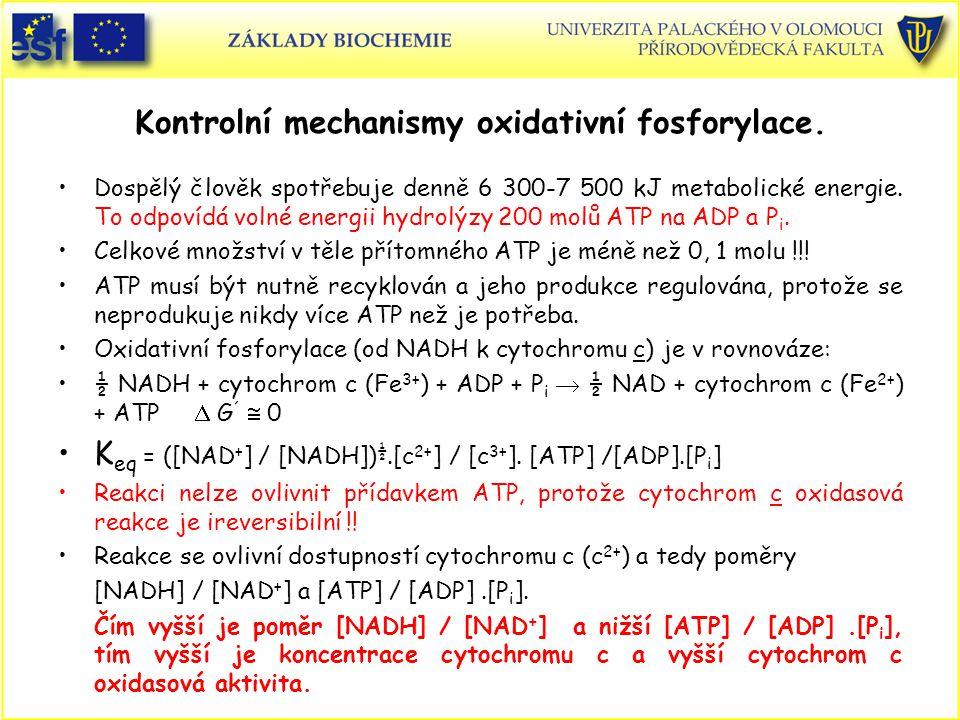 Kontrolní mechanismy oxidativní fosforylace. Dospělý člověk spotřebuje denně 6 300-7 500 kJ metabolické energie. To odpovídá volné energii hydrolýzy 2