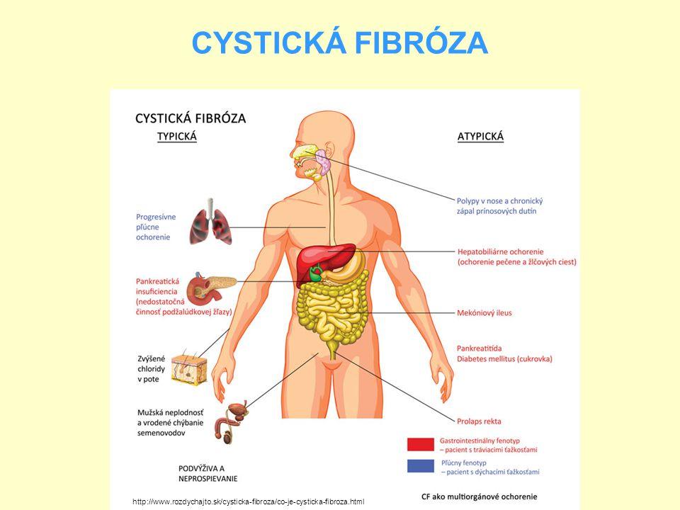 CYSTICKÁ FIBRÓZA http://www.rozdychajto.sk/cysticka-fibroza/co-je-cysticka-fibroza.html