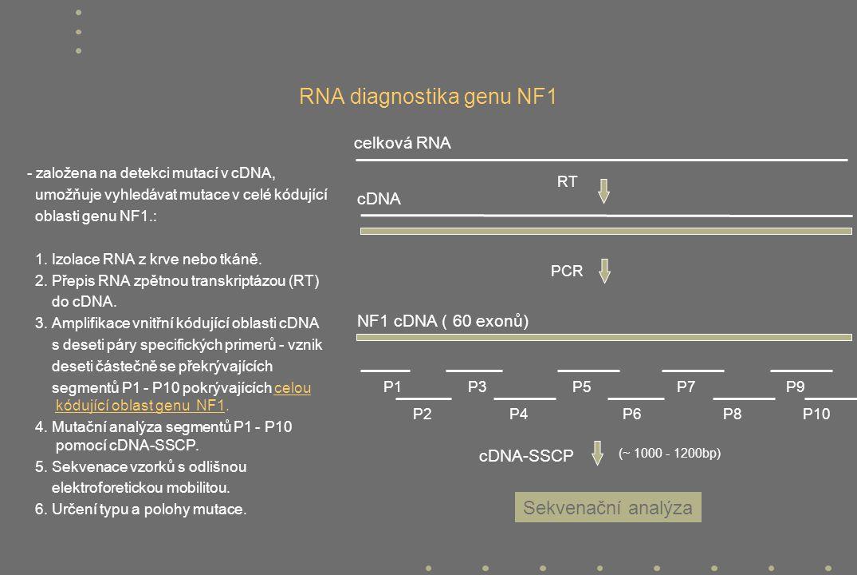 RNA diagnostika genu NF1 - založena na detekci mutací v cDNA, umožňuje vyhledávat mutace v celé kódující oblasti genu NF1.: 1. Izolace RNA z krve nebo