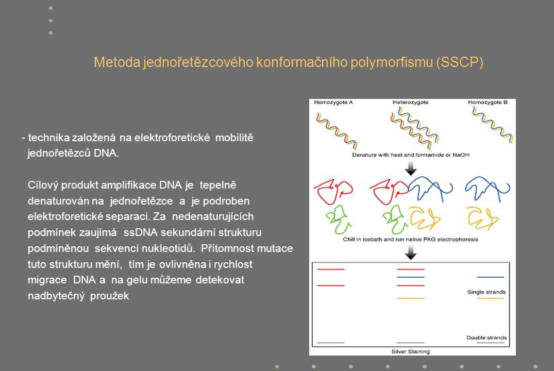 Metoda jednořetězcového konformačního polymorfismu (SSCP) - technika založená na elektroforetické mobilitě jednořetězců DNA. Cílový produkt amplifikac