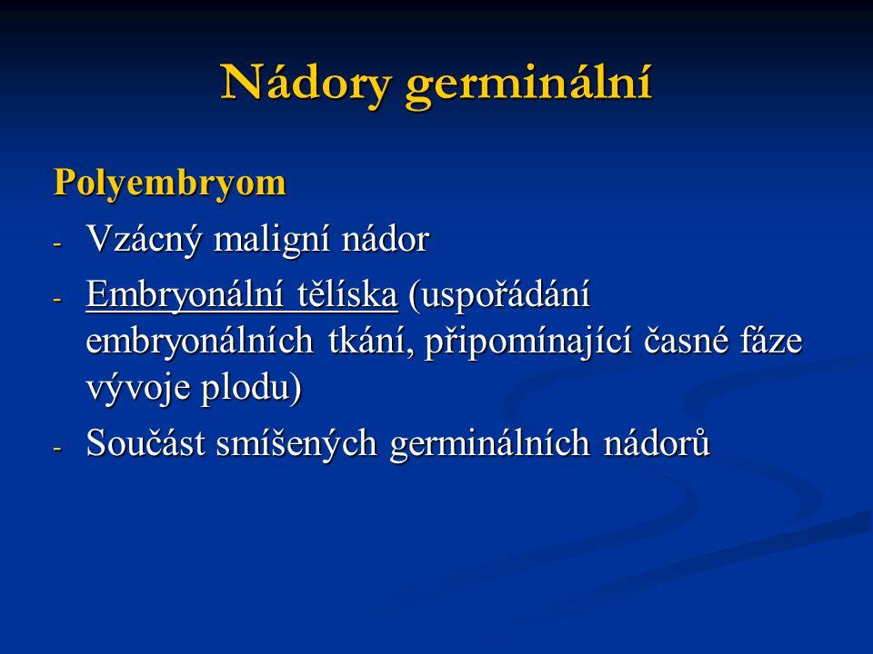 Polyembryom - Vzácný maligní nádor - Embryonální tělíska (uspořádání embryonálních tkání, připomínající časné fáze vývoje plodu) - Součást smíšených g