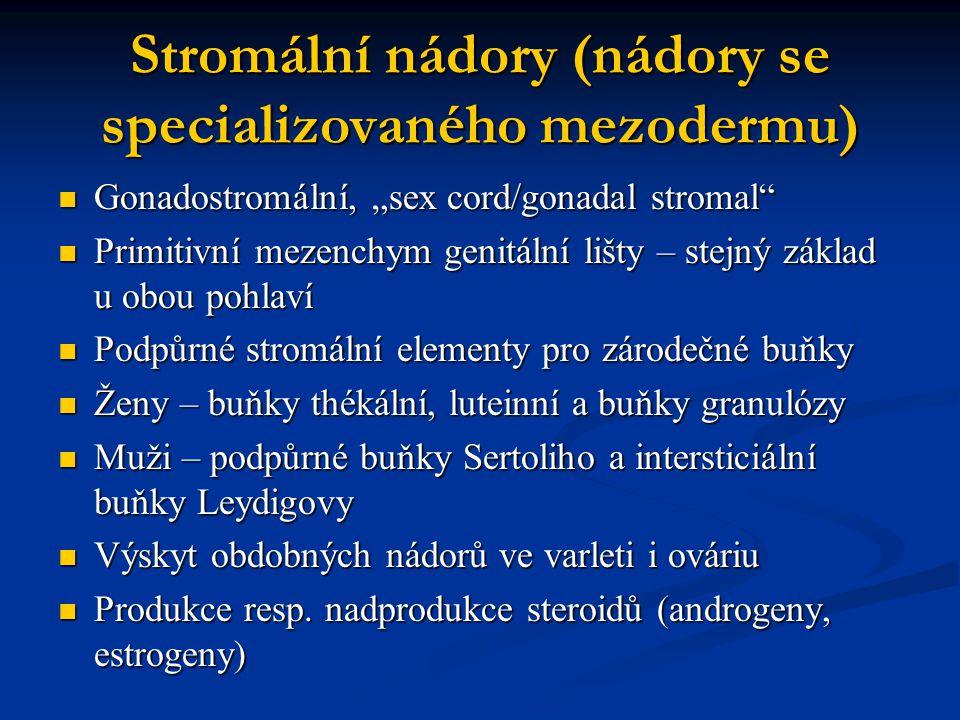 """Stromální nádory (nádory se specializovaného mezodermu) Gonadostromální, """"sex cord/gonadal stromal"""" Gonadostromální, """"sex cord/gonadal stromal"""" Primit"""