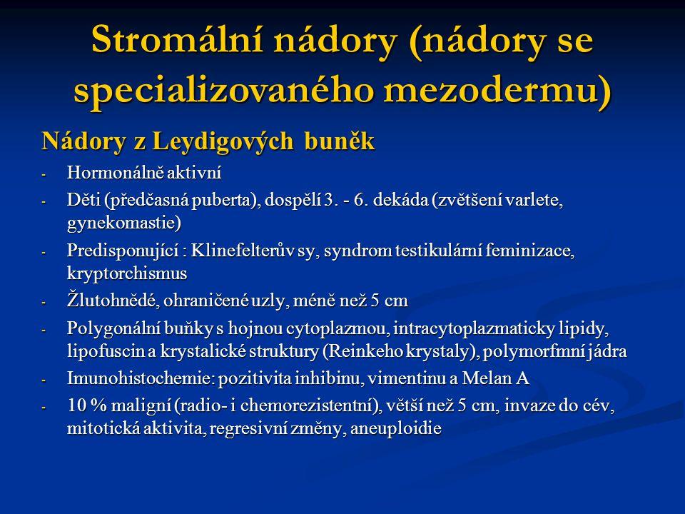 Nádory z Leydigových buněk - Hormonálně aktivní - Děti (předčasná puberta), dospělí 3. - 6. dekáda (zvětšení varlete, gynekomastie) - Predisponující :