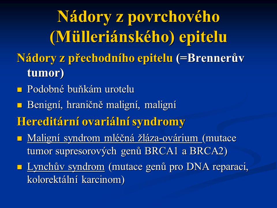 Nádory z přechodního epitelu (=Brennerův tumor) Podobné buňkám urotelu Podobné buňkám urotelu Benigní, hraničně maligní, maligní Benigní, hraničně mal