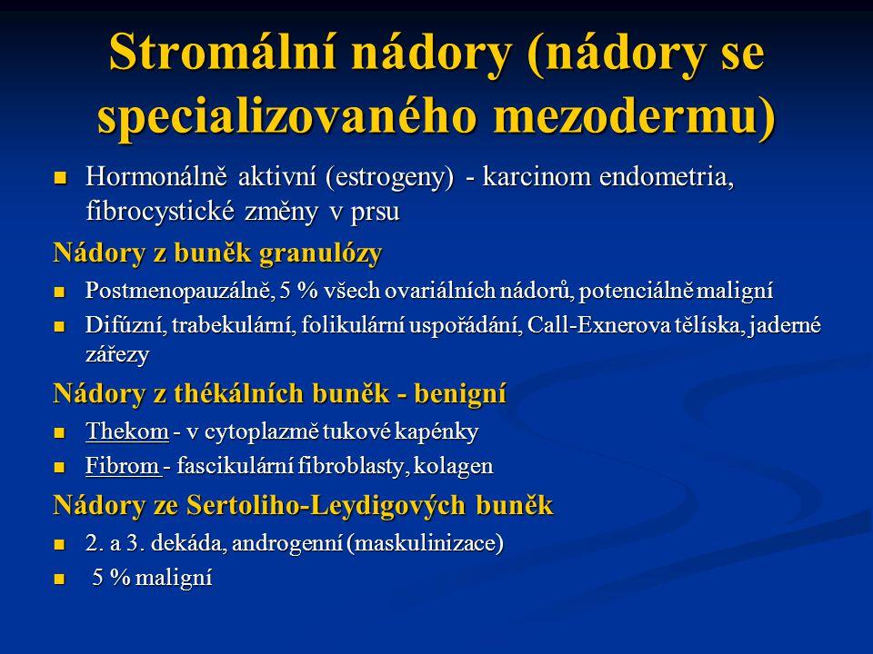 Stromální nádory (nádory se specializovaného mezodermu) Hormonálně aktivní (estrogeny) - karcinom endometria, fibrocystické změny v prsu Hormonálně ak