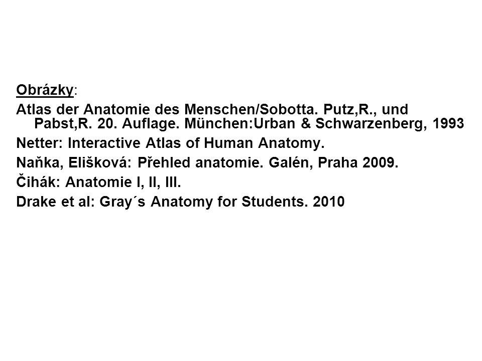 Obrázky: Atlas der Anatomie des Menschen/Sobotta.Putz,R., und Pabst,R.