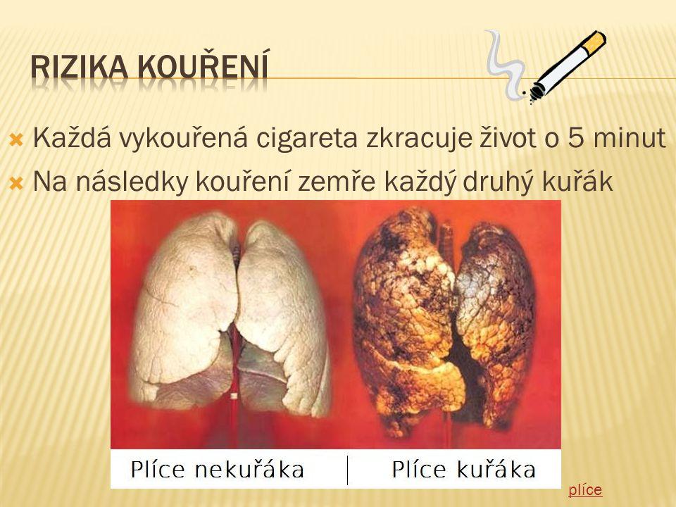  Každá vykouřená cigareta zkracuje život o 5 minut  Na následky kouření zemře každý druhý kuřák plíce