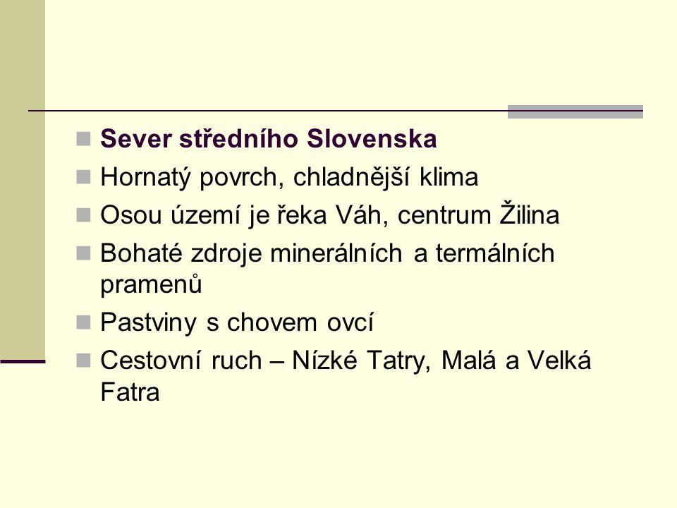 Sever středního Slovenska Hornatý povrch, chladnější klima Osou území je řeka Váh, centrum Žilina Bohaté zdroje minerálních a termálních pramenů Pastviny s chovem ovcí Cestovní ruch – Nízké Tatry, Malá a Velká Fatra