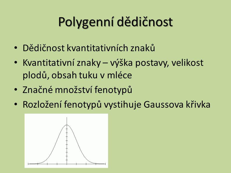 Polygenní dědičnost Dědičnost kvantitativních znaků Kvantitativní znaky – výška postavy, velikost plodů, obsah tuku v mléce Značné množství fenotypů Rozložení fenotypů vystihuje Gaussova křivka