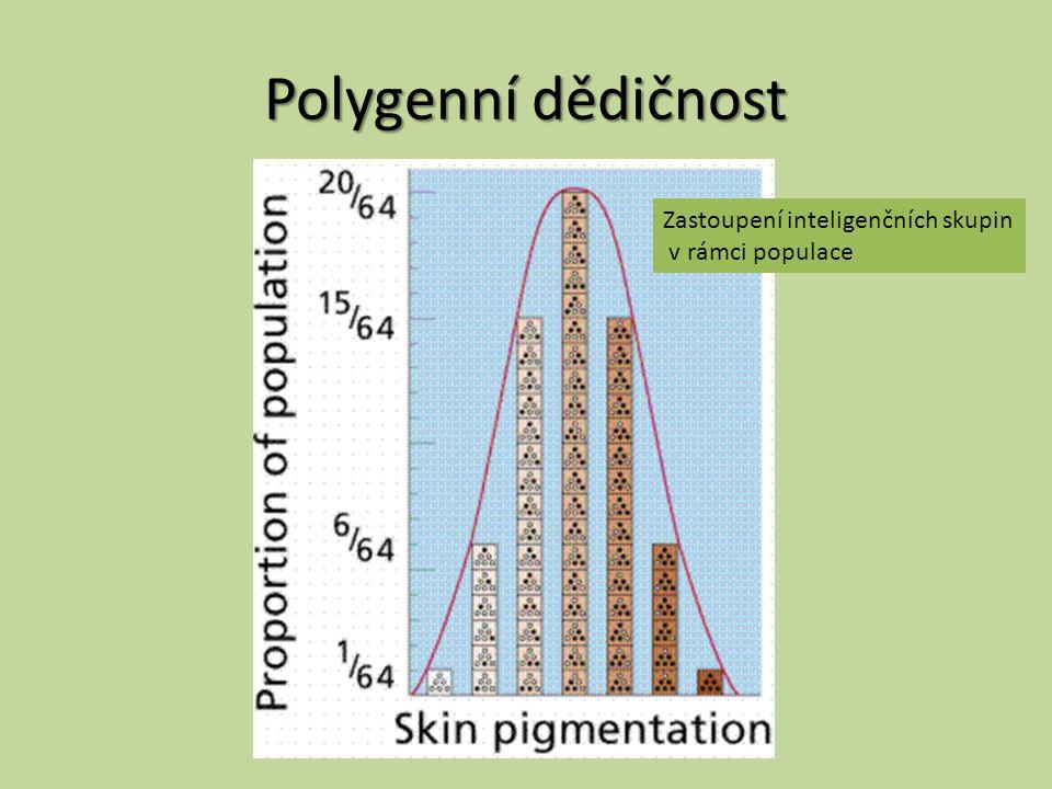 Polygenní dědičnost Zastoupení inteligenčních skupin v rámci populace